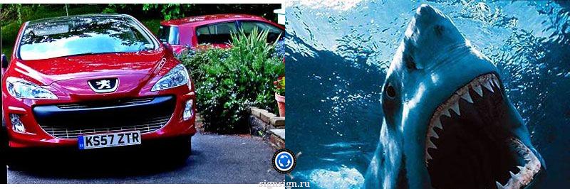 Peugeot фото