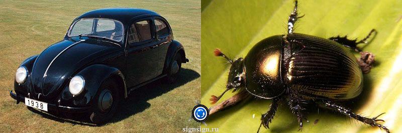 Volkswagen Käfer фото
