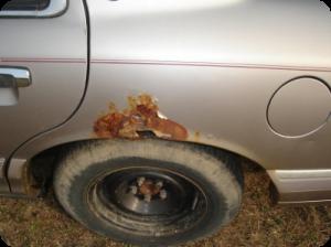 Антикоррозийная защита автомобиля фото