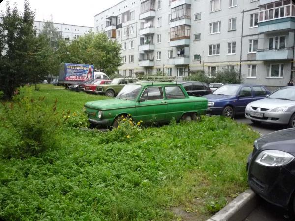 автомобиль на газоне фото